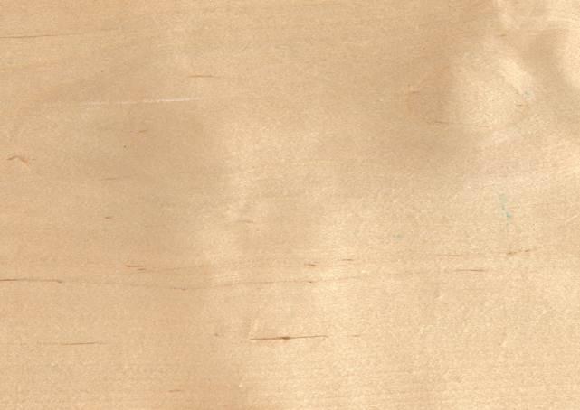 Кромка из шпона березы 1,5 мм