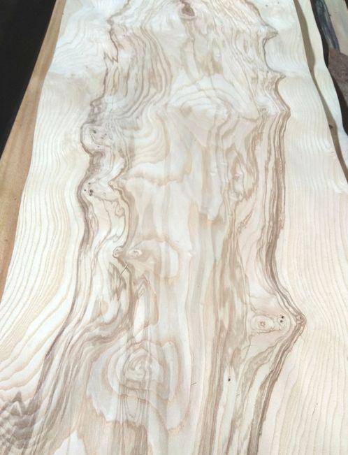 Ясень оливковый кластер шпон